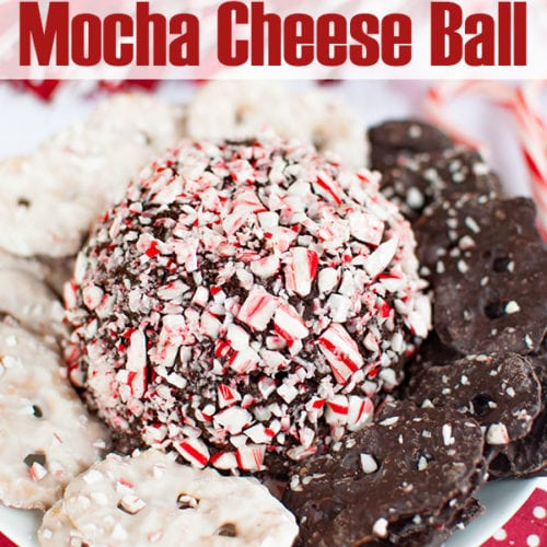 Peppermint mocha cheesecake cheese ball covered in crushed candy canes