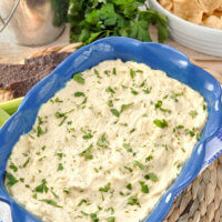 Garlic Parmesan Chicken Wing Dip Recipe