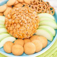 caramel cheesecake cheese ball on a light blue platter